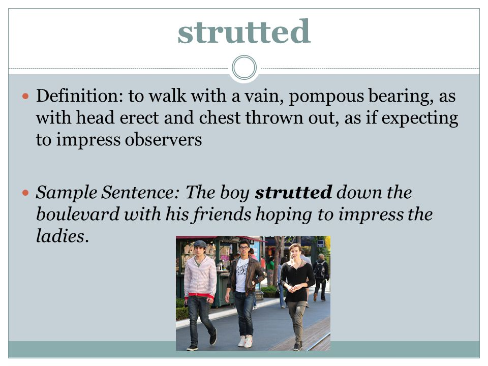 strutted Definition: to walk with a vain, pompous bearing, as with head erect and chest thrown out, as if expecting to impress observers.