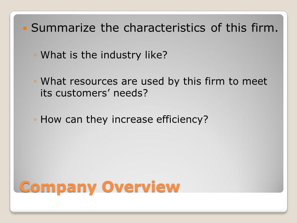 Company Overview Summarize the characteristics of this firm.
