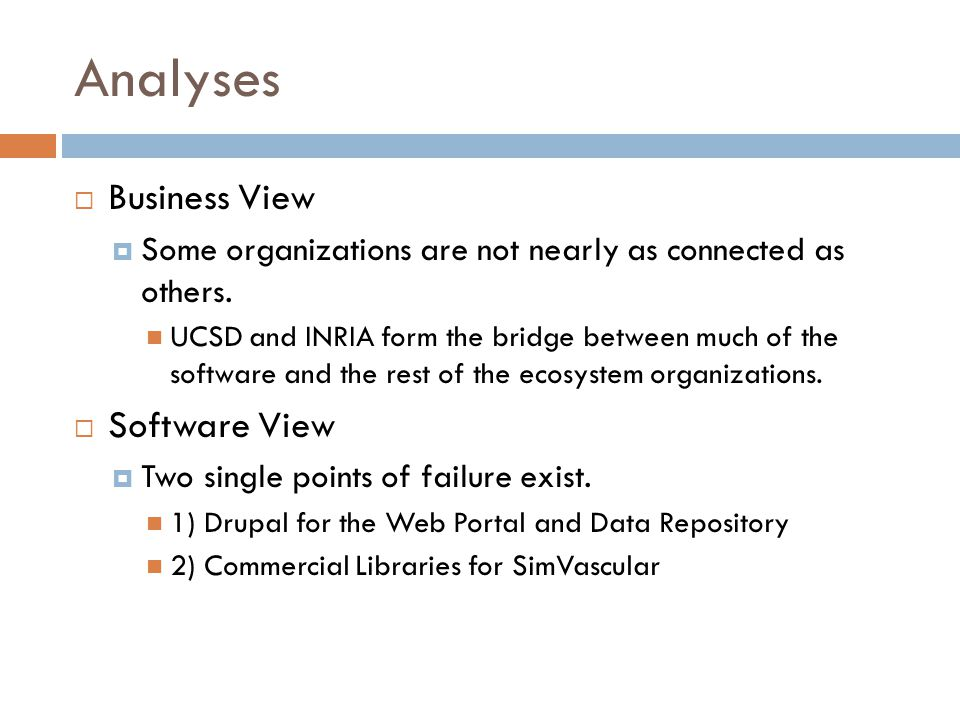 Analyses Business View Software View