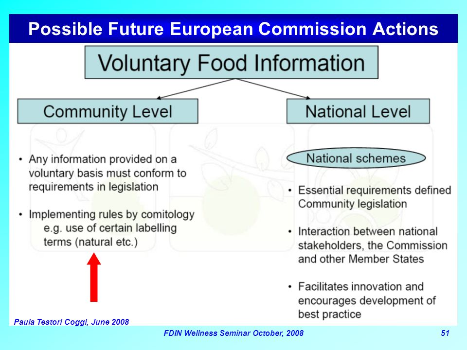 Possible Future European Commission Actions
