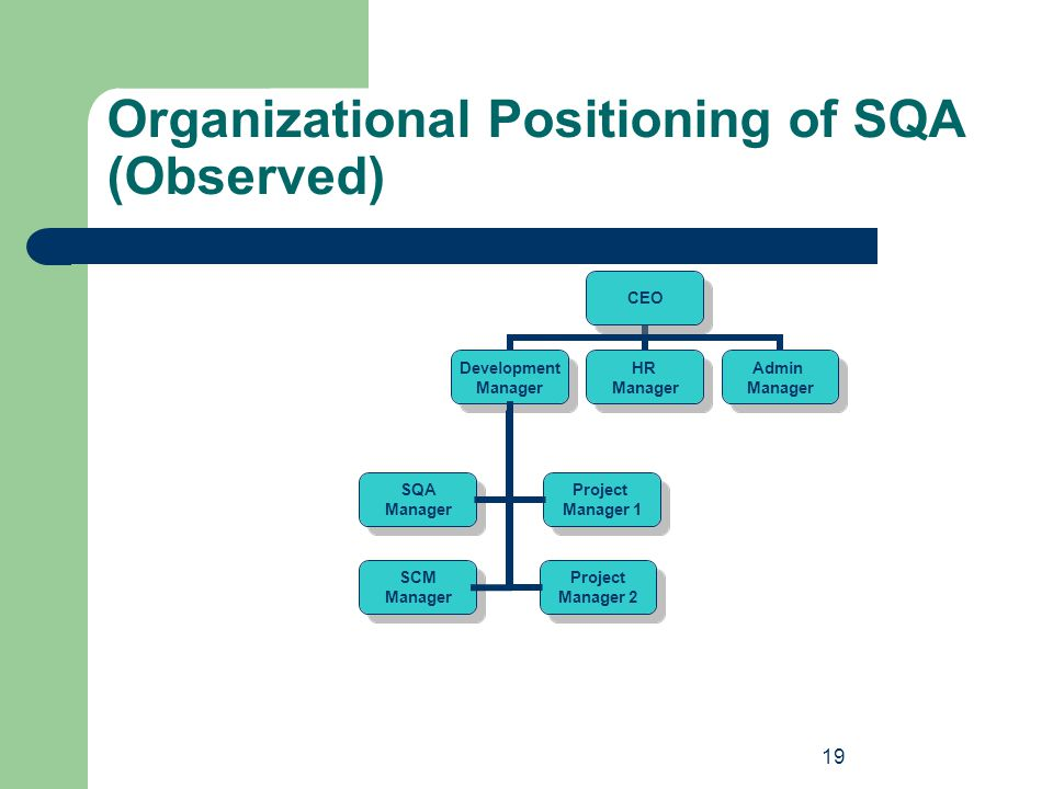 Organizational Positioning of SQA (Observed)