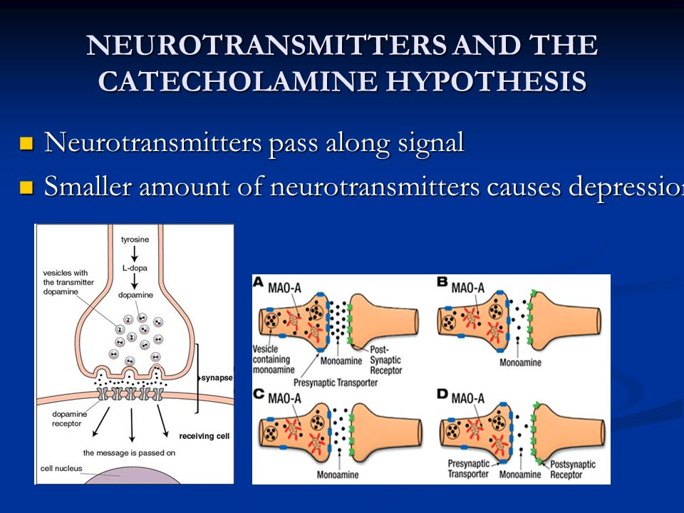NEUROTRANSMITTERS AND THE CATECHOLAMINE HYPOTHESIS