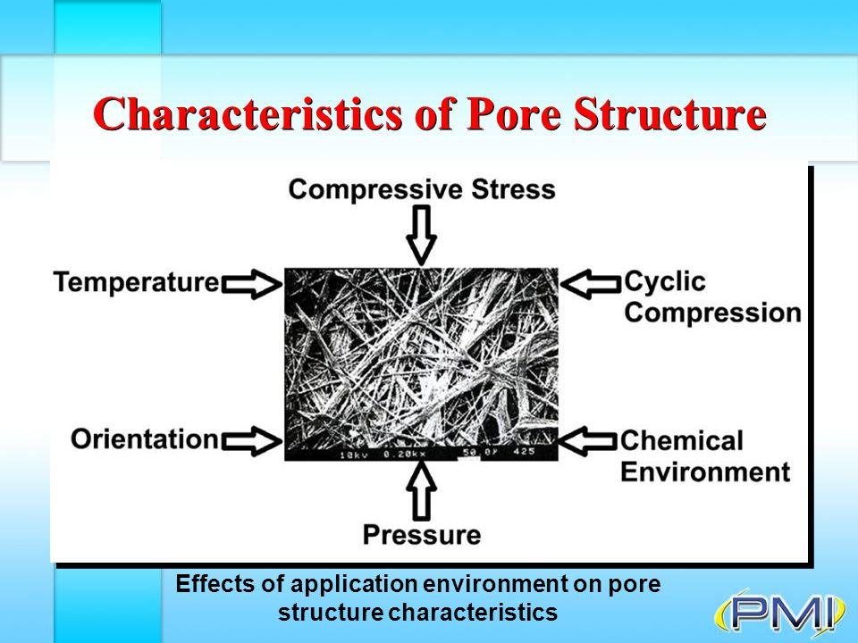 Characteristics of Pore Structure