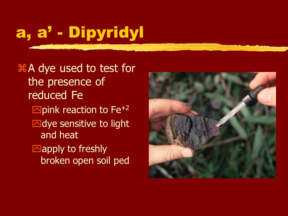 a, a' - Dipyridyl A dye used to test for the presence of reduced Fe
