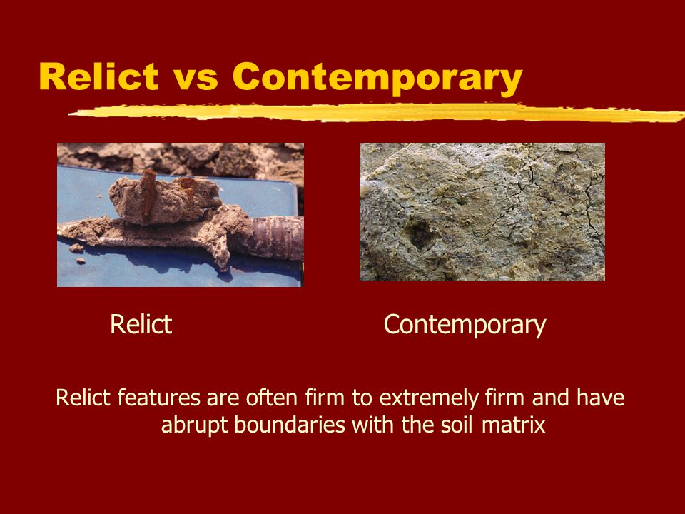 Relict vs Contemporary