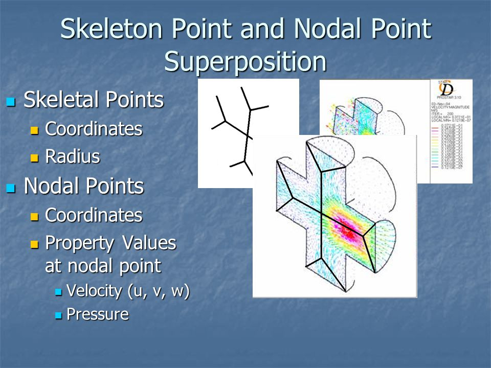 Skeleton Point and Nodal Point Superposition