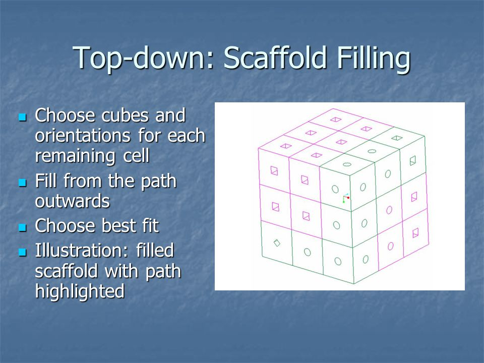 Top-down: Scaffold Filling