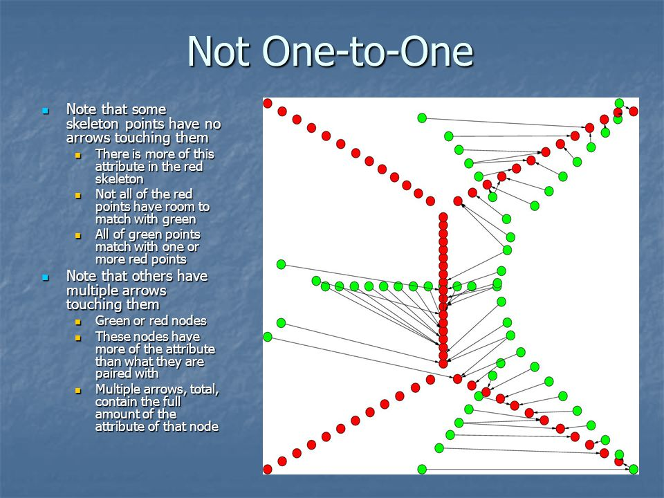 Not One-to-One Note that some skeleton points have no arrows touching them. There is more of this attribute in the red skeleton.