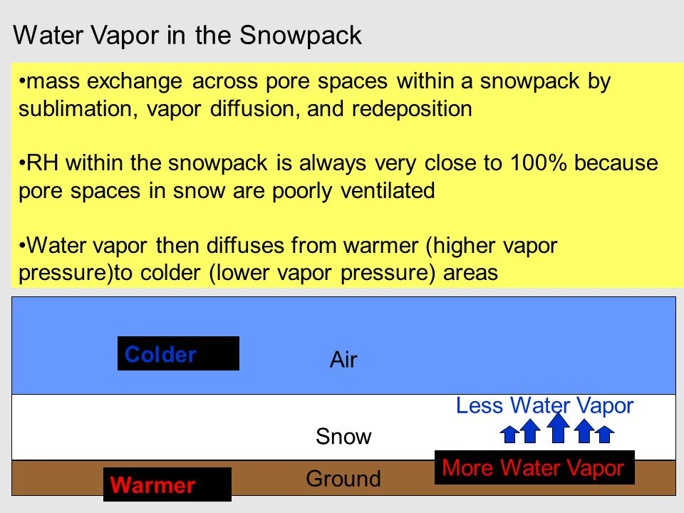 Water Vapor in the Snowpack