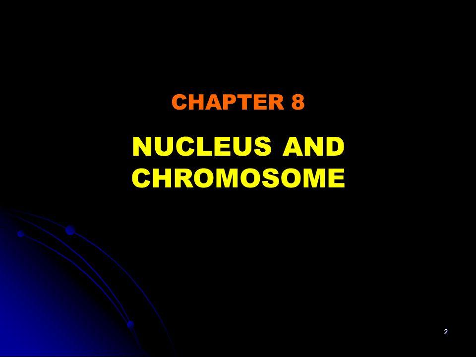 NUCLEUS AND CHROMOSOME