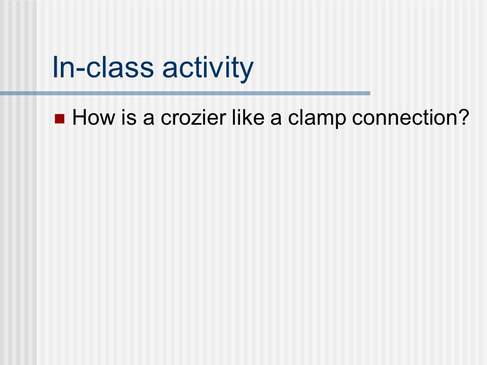In-class activity How is a crozier like a clamp connection