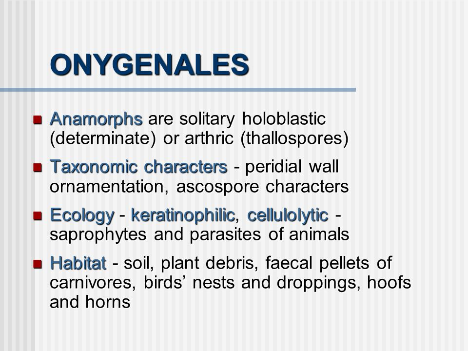 ONYGENALES Anamorphs are solitary holoblastic (determinate) or arthric (thallospores)