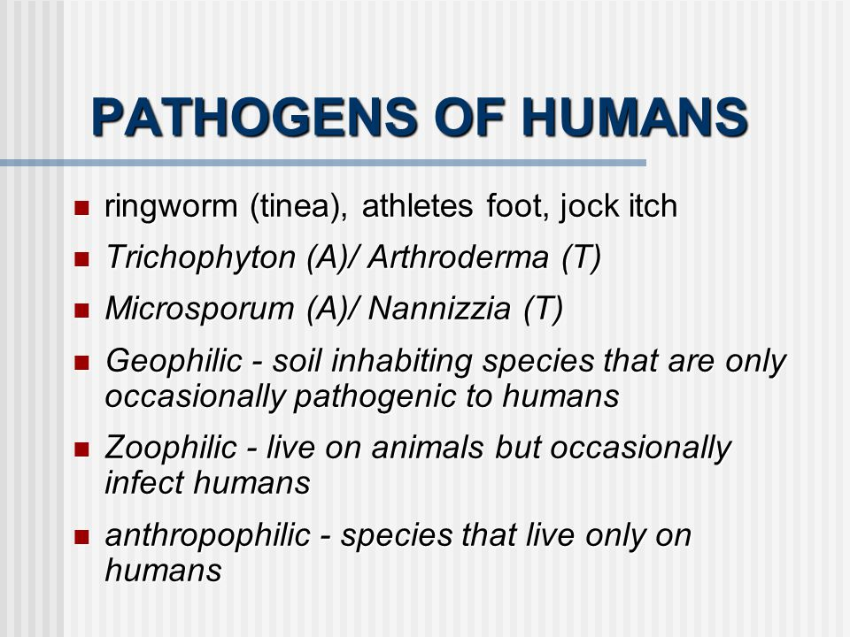 PATHOGENS OF HUMANS ringworm (tinea), athletes foot, jock itch