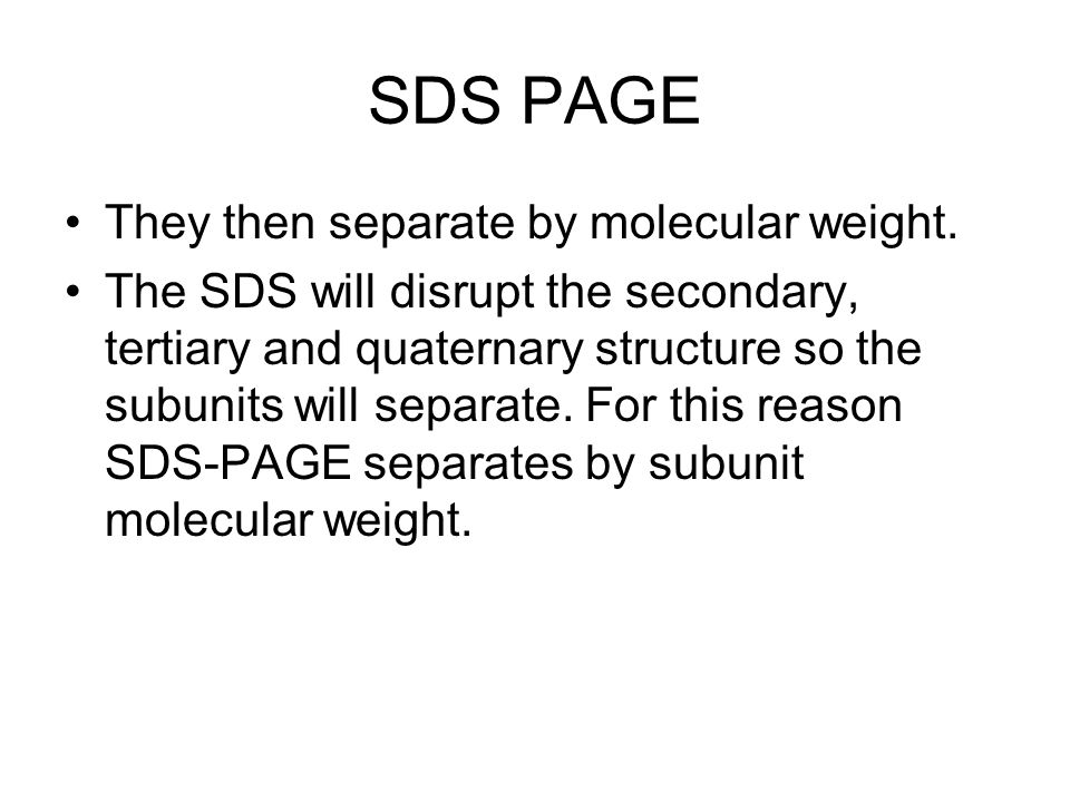 SDS PAGE They then separate by molecular weight.