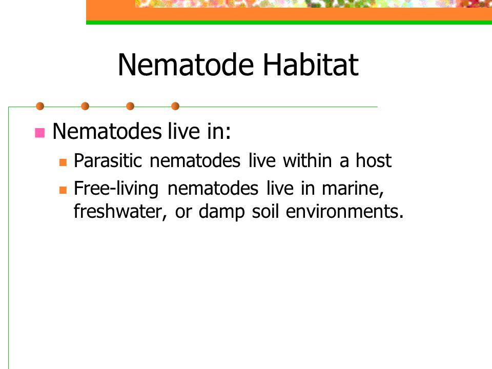 Nematode Habitat Nematodes live in: