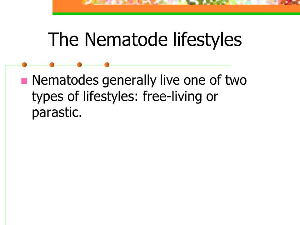 The Nematode lifestyles