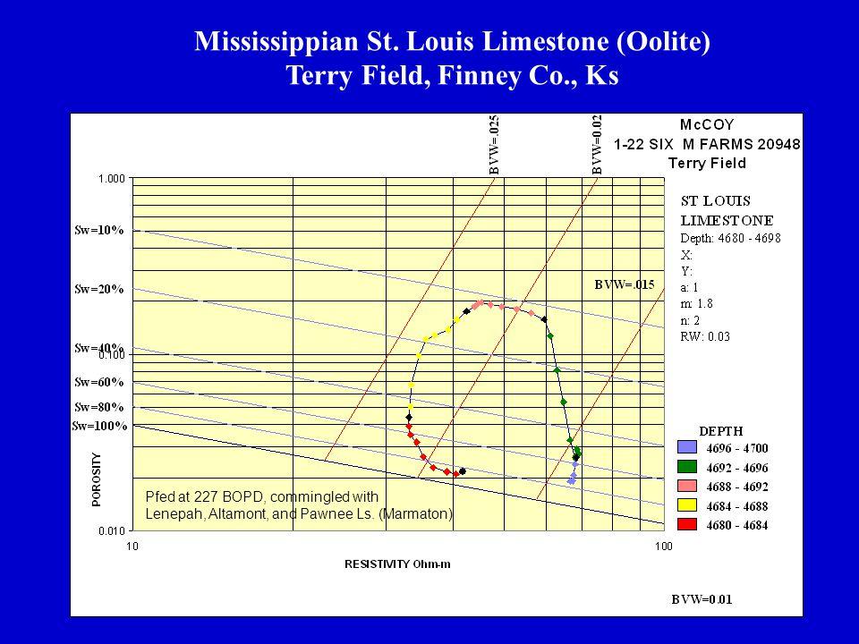 Mississippian St. Louis Limestone (Oolite) Terry Field, Finney Co., Ks