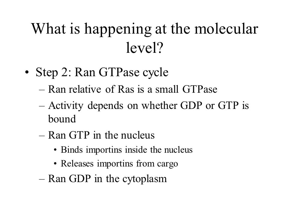 What is happening at the molecular level