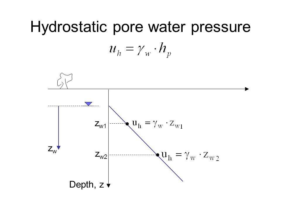 Hydrostatic pore water pressure