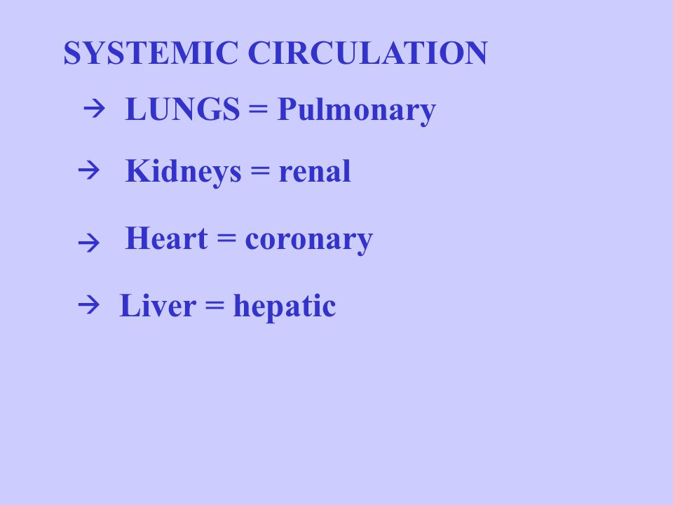 SYSTEMIC CIRCULATION LUNGS = Pulmonary Kidneys = renal