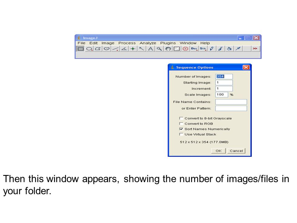Then this window appears, showing the number of images/files in your folder.