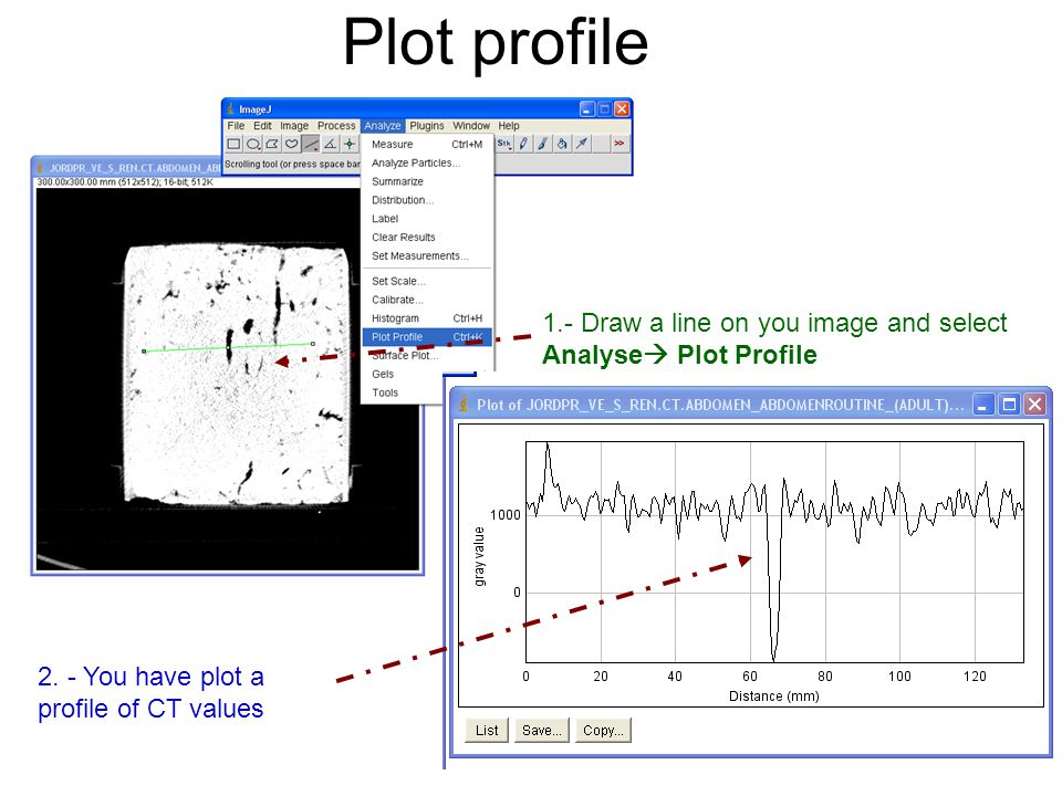 Plot profile 1.- Draw a line on you image and select Analyse Plot Profile.