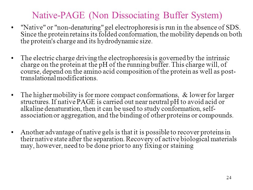 Native-PAGE (Non Dissociating Buffer System)
