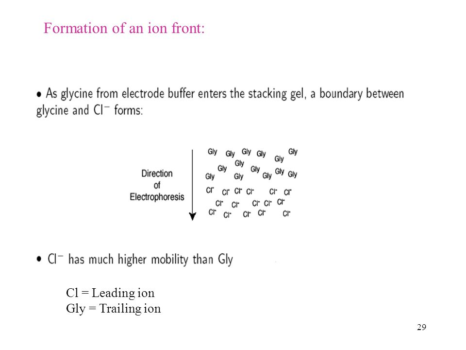 Formation of an ion front:
