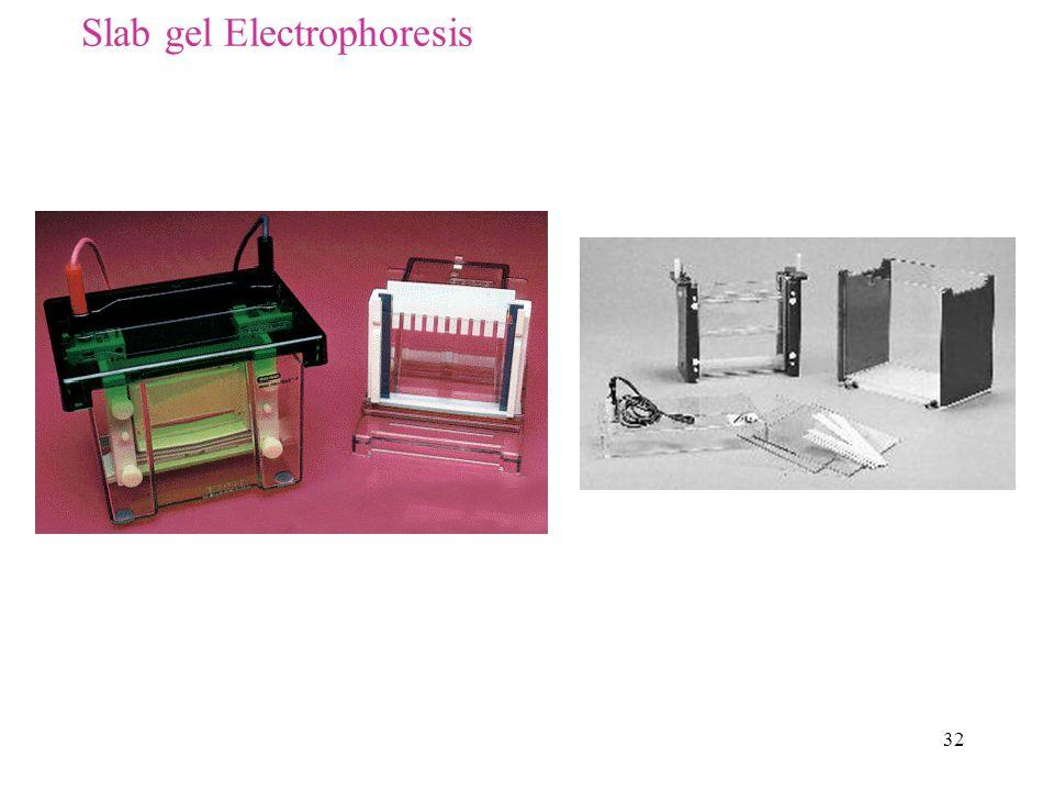 Slab gel Electrophoresis