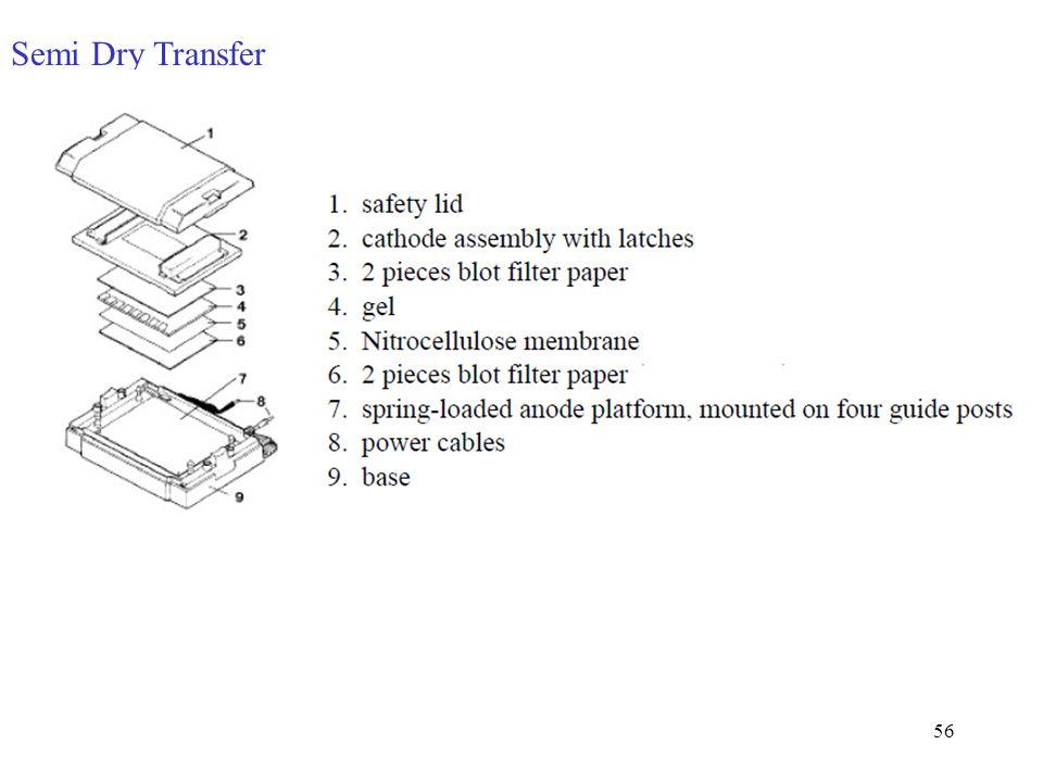 Semi Dry Transfer