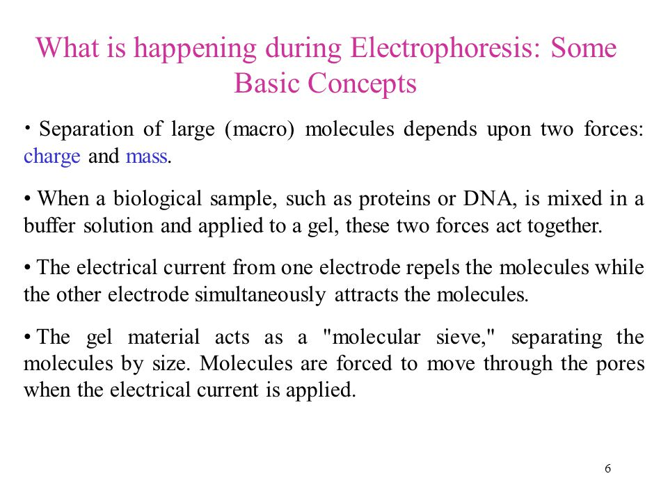 What is happening during Electrophoresis: Some Basic Concepts