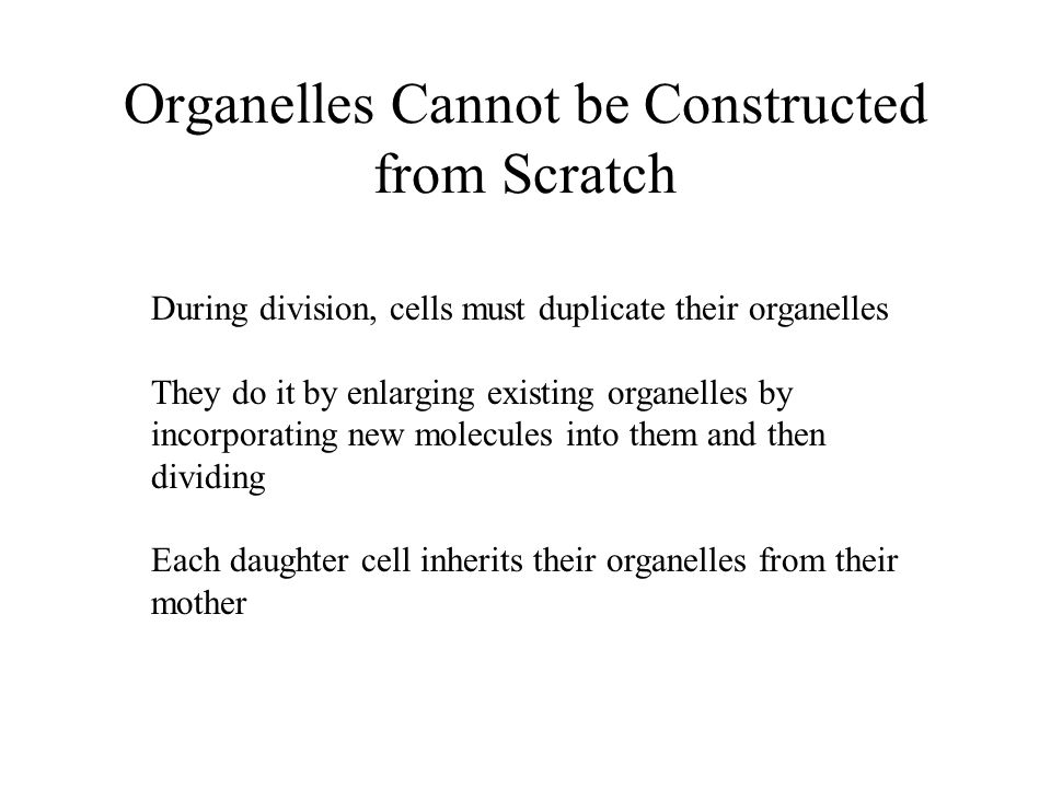 Organelles Cannot be Constructed from Scratch