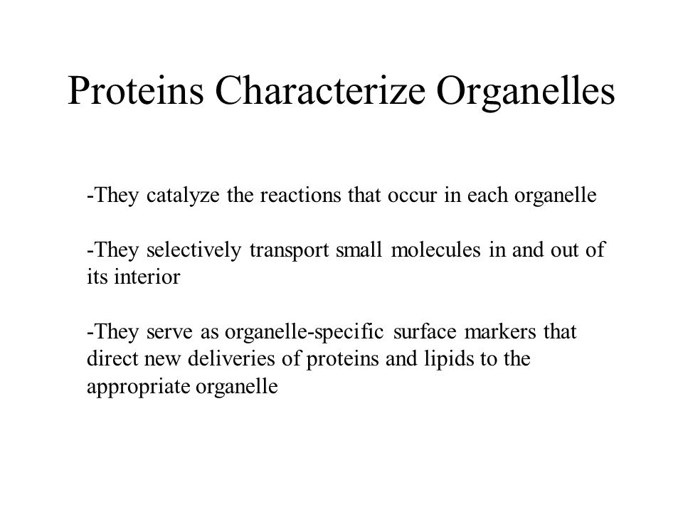 Proteins Characterize Organelles