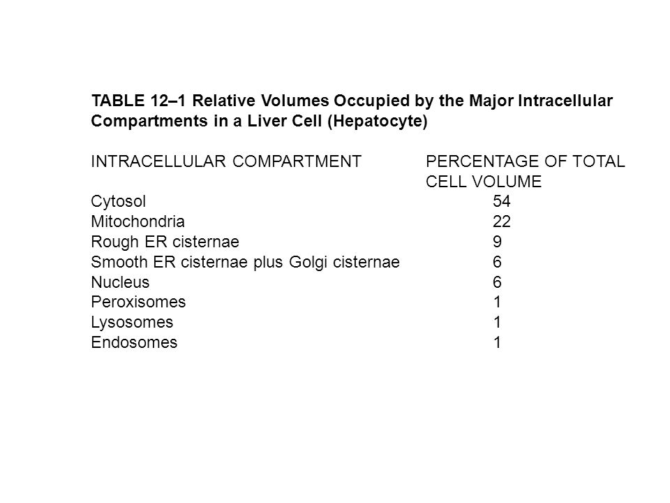 TABLE 12–1 Relative Volumes Occupied by the Major Intracellular