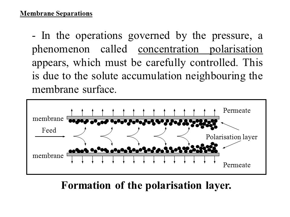 Formation of the polarisation layer.