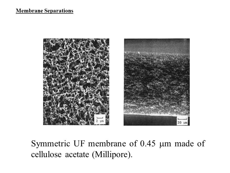 Membrane Separations Symmetric UF membrane of 0.45 m made of cellulose acetate (Millipore).