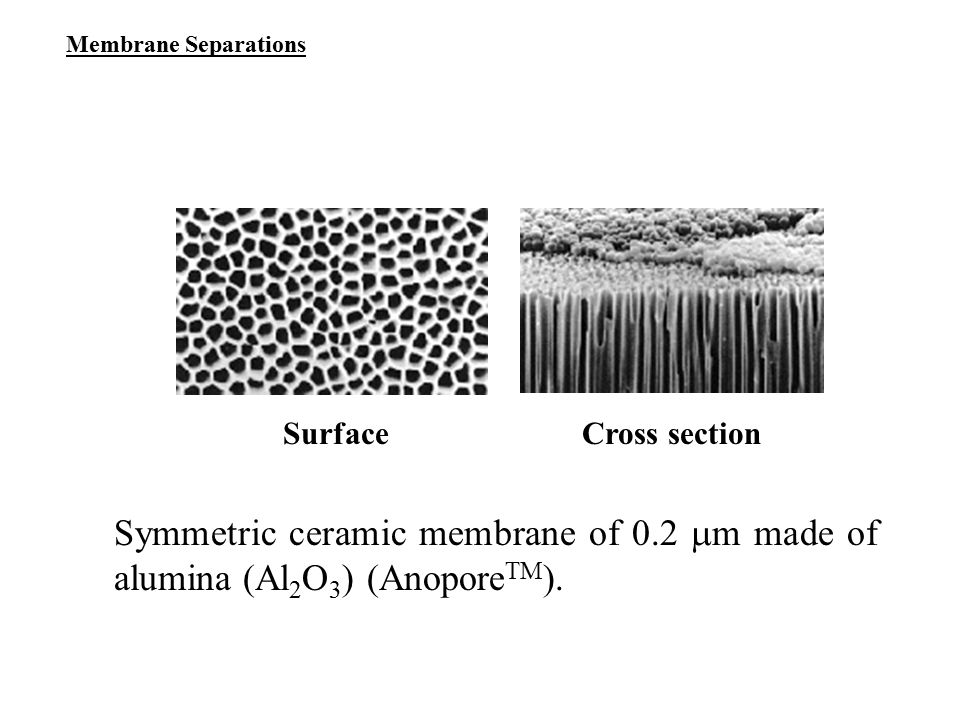 Membrane Separations Surface. Cross section.
