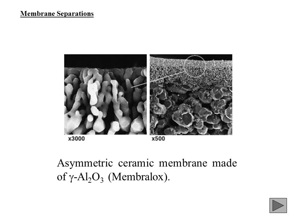Asymmetric ceramic membrane made of -Al2O3 (Membralox).