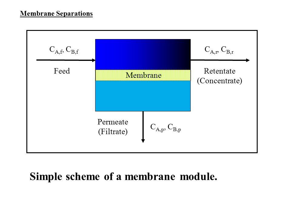 Simple scheme of a membrane module.