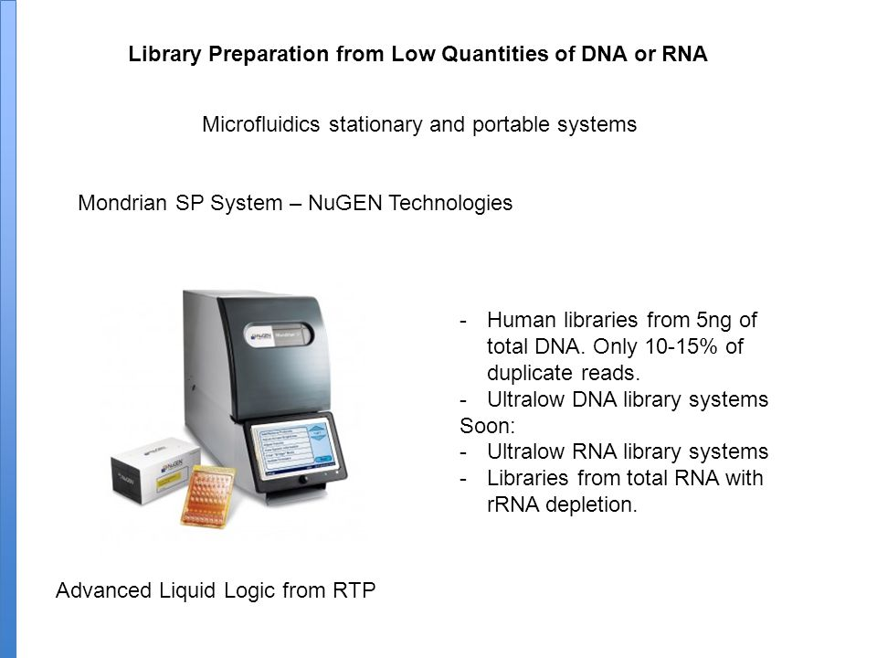 Library Preparation from Low Quantities of DNA or RNA