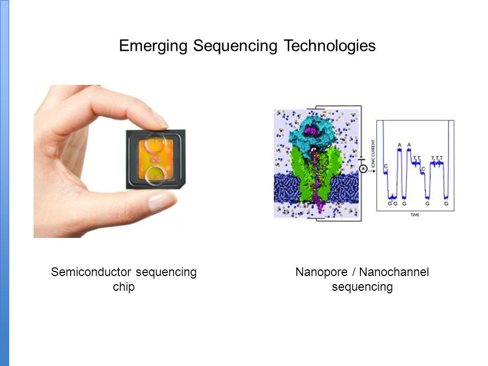 Emerging Sequencing Technologies