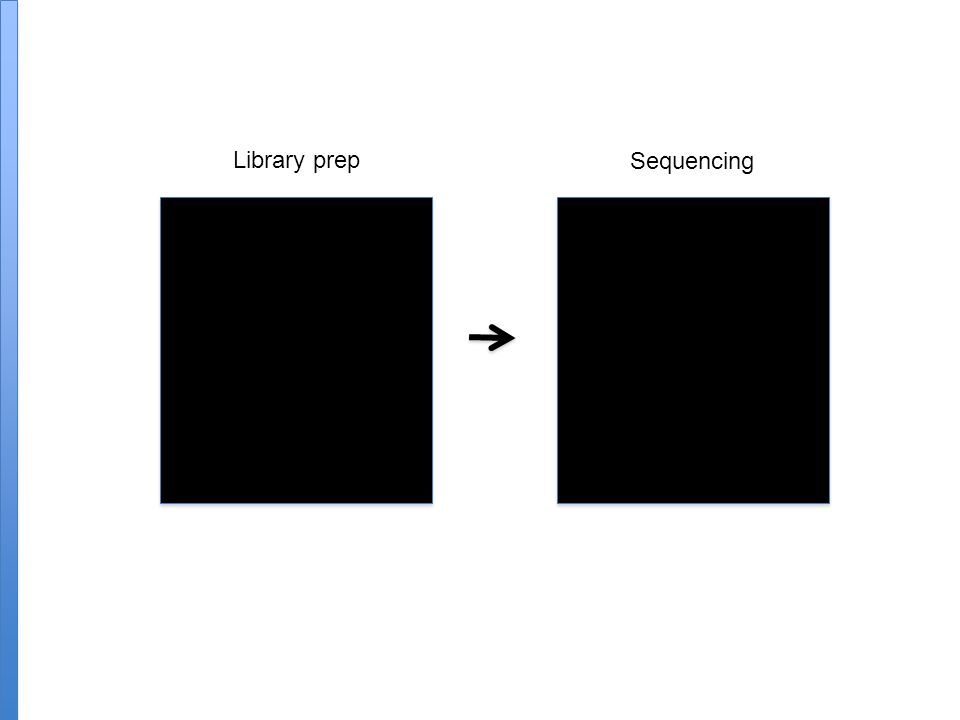 Library prep Sequencing