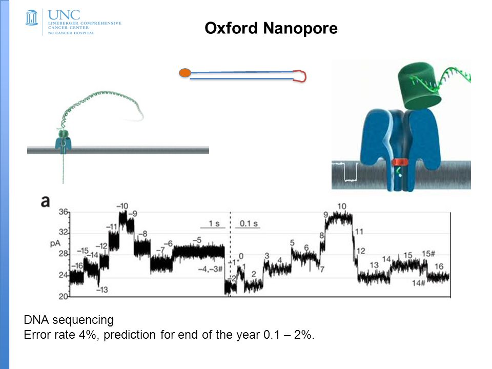 Oxford Nanopore DNA sequencing