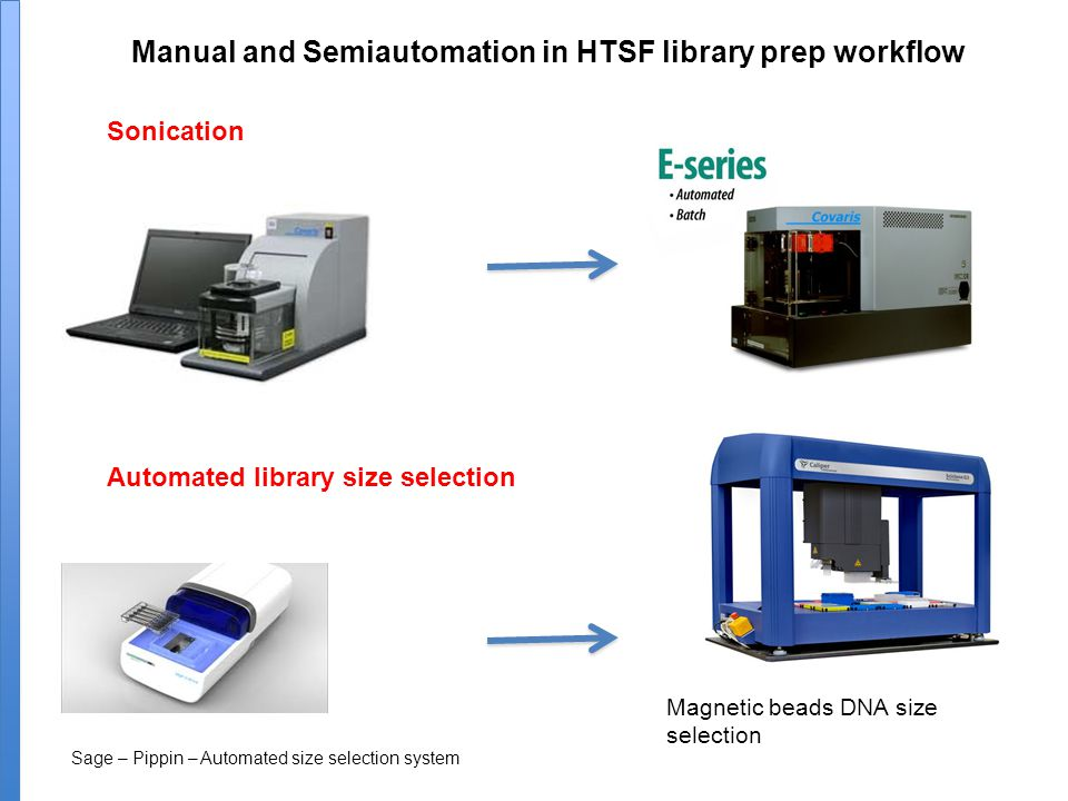 Manual and Semiautomation in HTSF library prep workflow