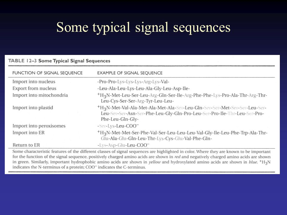 Some typical signal sequences