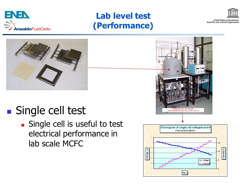 Lab level test (Performance)
