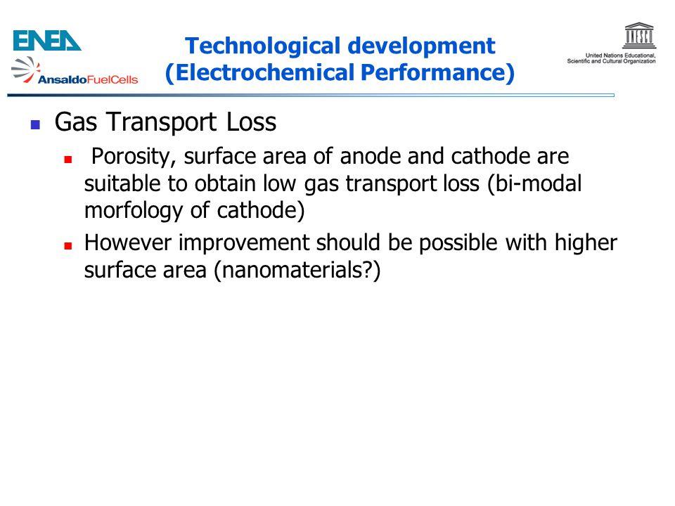 Technological development (Electrochemical Performance)