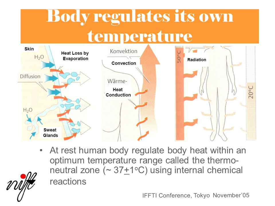 Body regulates its own temperature