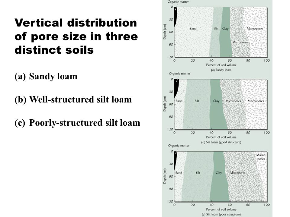 Vertical distribution of pore size in three distinct soils