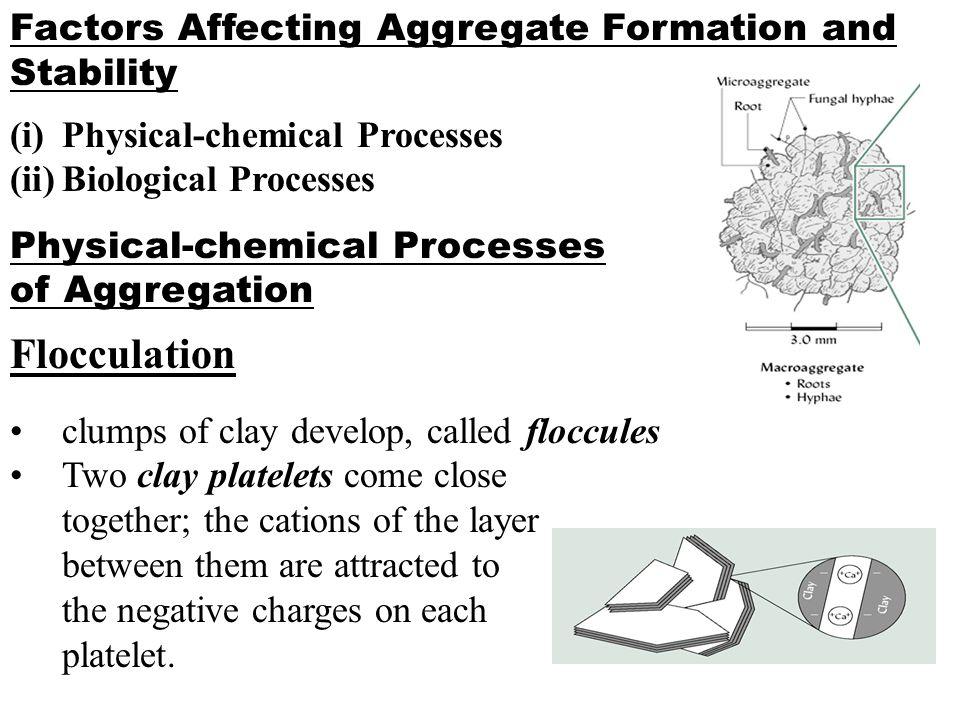 Flocculation Factors Affecting Aggregate Formation and Stability
